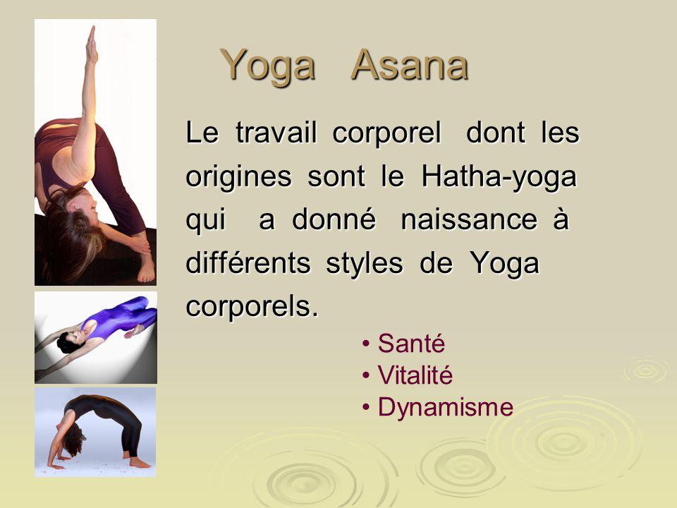Yoga Asana Yoga Asana Le travail corporel dont les origines sont le Hatha-yoga qui a donné naissance à différents styles de Yoga corporels. Santé Vita