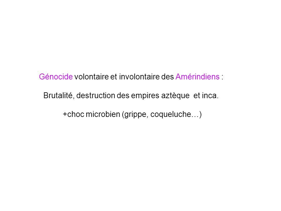 Génocide volontaire et involontaire des Amérindiens : Brutalité, destruction des empires aztèque et inca. +choc microbien (grippe, coqueluche…)