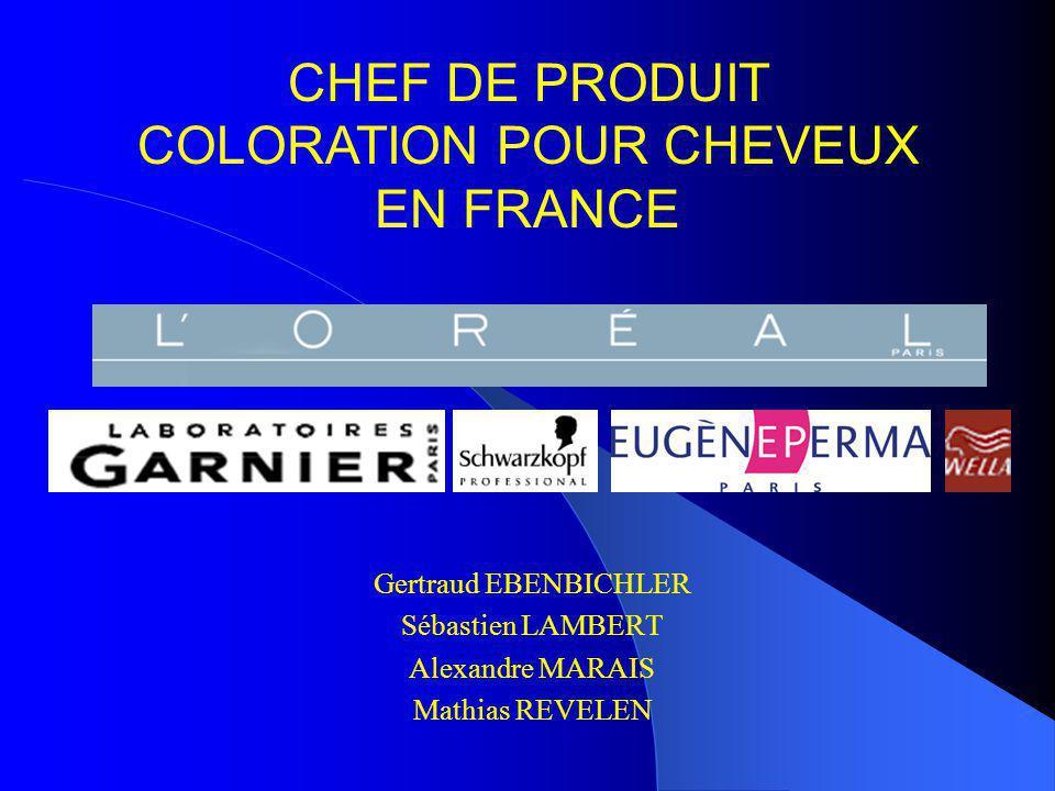 CHEF DE PRODUIT COLORATION POUR CHEVEUX EN FRANCE Gertraud EBENBICHLER Sébastien LAMBERT Alexandre MARAIS Mathias REVELEN