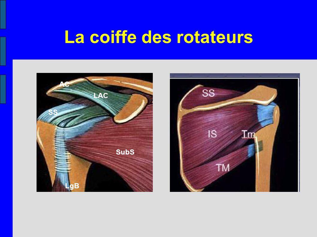 La coiffe des rotateurs SubS LAC AC LgB SS