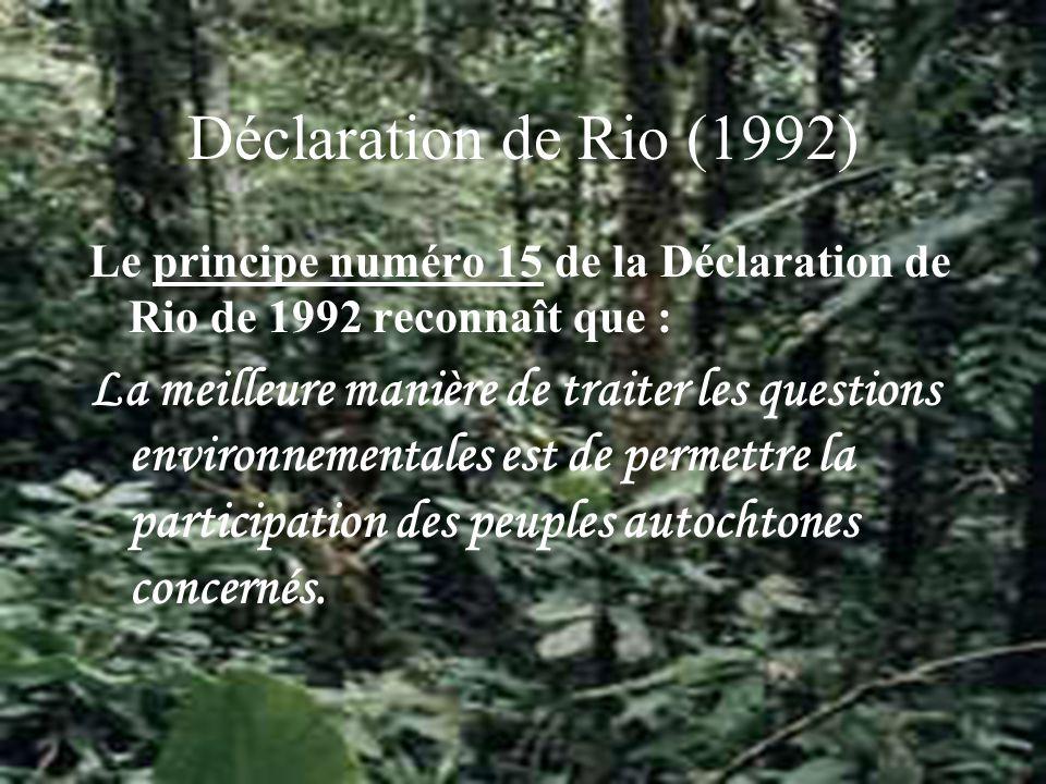 Déclaration de Rio (1992) Le principe numéro 15 de la Déclaration de Rio de 1992 reconnaît que : La meilleure manière de traiter les questions environnementales est de permettre la participation des peuples autochtones concernés.