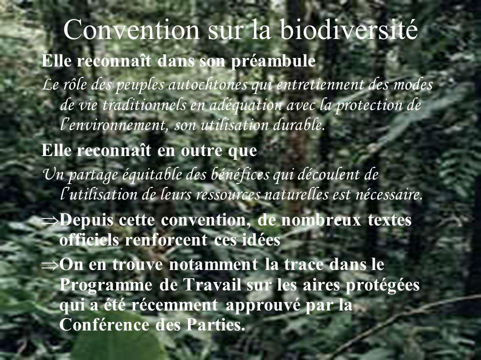 Convention sur la biodiversité Elle reconnaît dans son préambule Le rôle des peuples autochtones qui entretiennent des modes de vie traditionnels en adéquation avec la protection de lenvironnement, son utilisation durable.