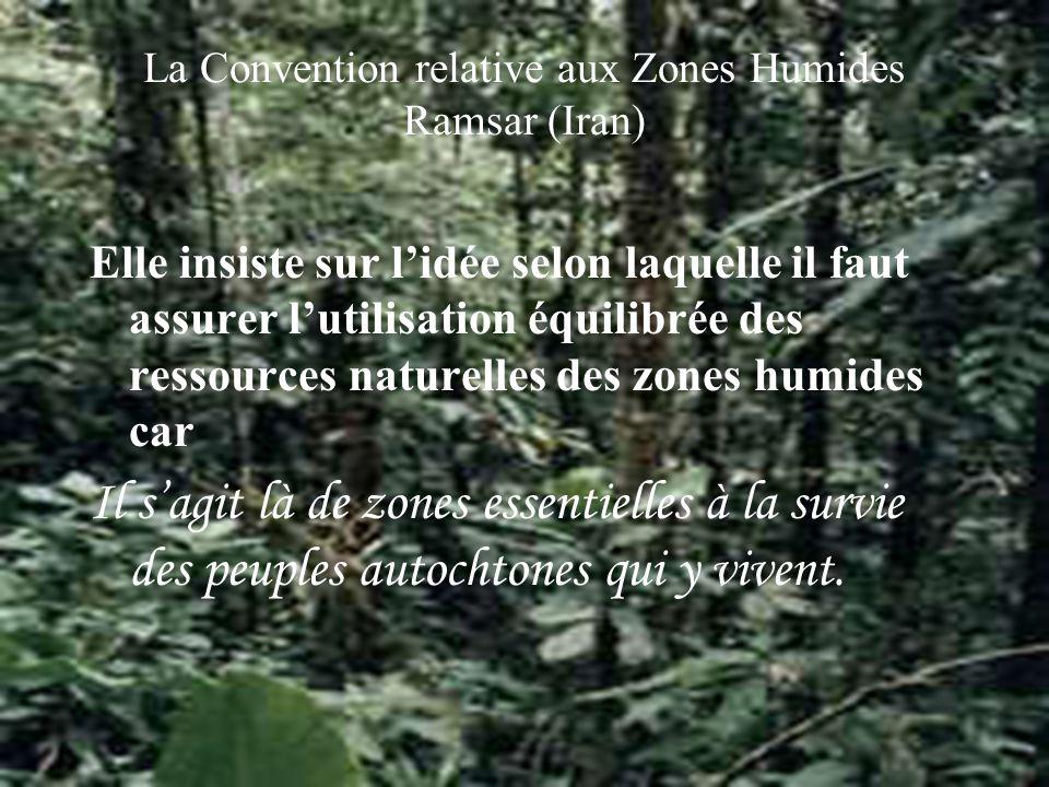 La Convention relative aux Zones Humides Ramsar (Iran) Elle insiste sur lidée selon laquelle il faut assurer lutilisation équilibrée des ressources naturelles des zones humides car Il sagit là de zones essentielles à la survie des peuples autochtones qui y vivent.