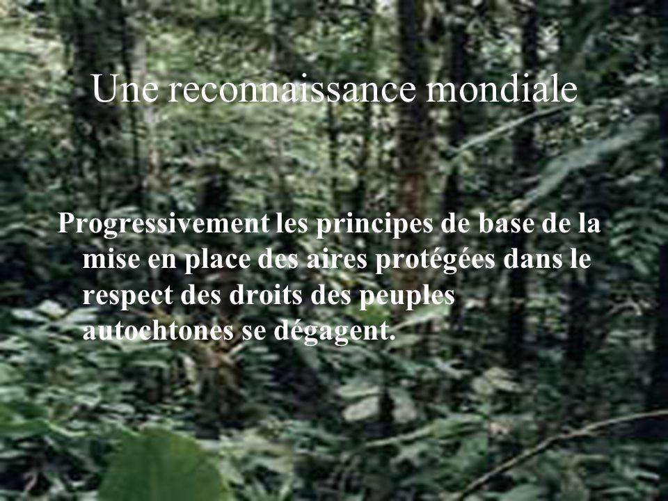Une reconnaissance mondiale Progressivement les principes de base de la mise en place des aires protégées dans le respect des droits des peuples autochtones se dégagent.