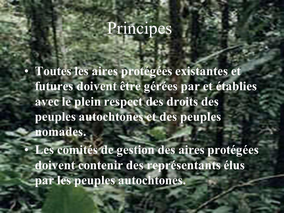 PrincipePrincipes sur lesquels se basent les Nations Unies Gestion des aires protégées 2.