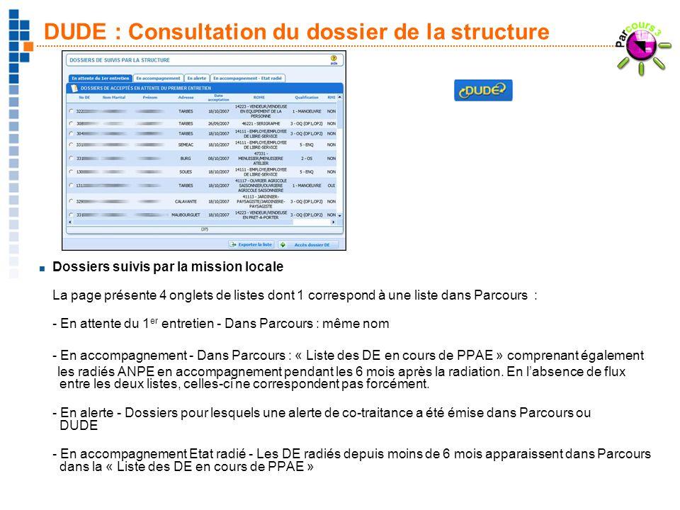 21 DUDE : Consultation du dossier de la structure Dossiers suivis par la mission locale La page présente 4 onglets de listes dont 1 correspond à une l