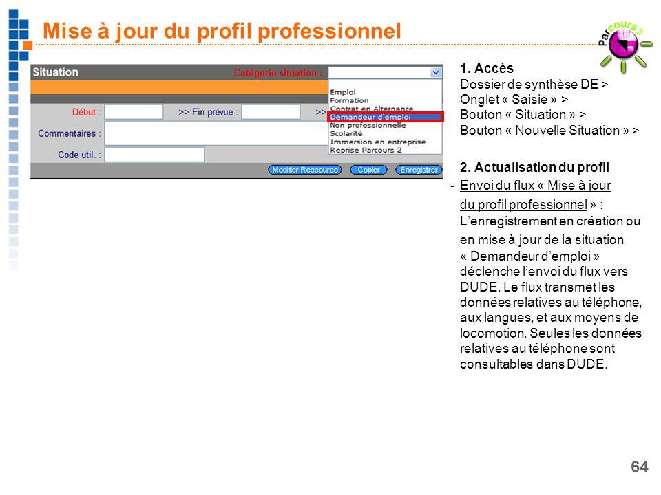 64 Mise à jour du profil professionnel 1. Accès Dossier de synthèse DE > Onglet « Saisie » > Bouton « Situation » > Bouton « Nouvelle Situation » > 2.
