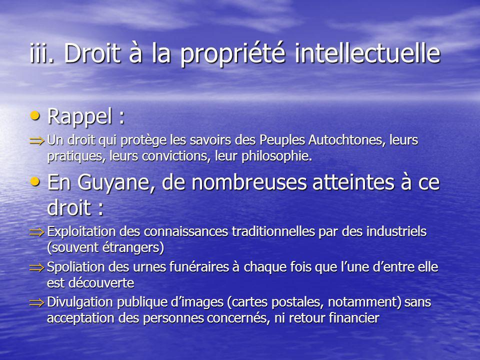 iii. Droit à la propriété intellectuelle Rappel : Rappel : Un droit qui protège les savoirs des Peuples Autochtones, leurs pratiques, leurs conviction