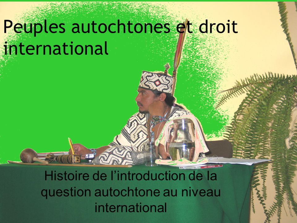 Peuples autochtones et droit international Histoire de lintroduction de la question autochtone au niveau international