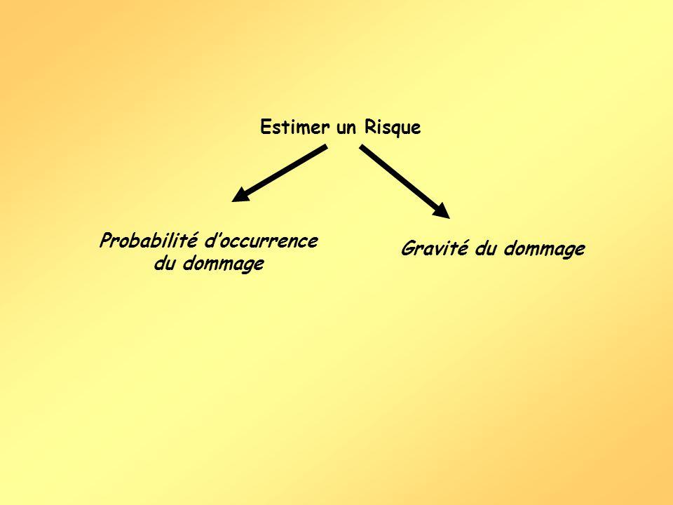 Estimer un Risque Probabilité doccurrence du dommage Gravité du dommage