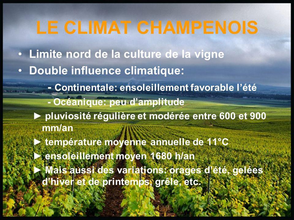 LE CLIMAT CHAMPENOIS Limite nord de la culture de la vigne Double influence climatique: - Continentale: ensoleillement favorable lété - Océanique: peu