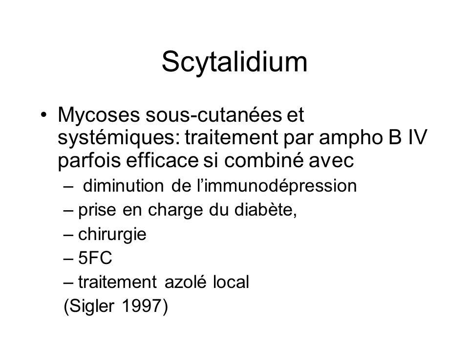 Scytalidium Traitements 1992 Guérison par amorolfine crème et vernis x 12 mois dune patiente de Martinique avec atteinte palmo-plantaire et unguéale par Sh, guérison maintenue à 8 ans (Obs.