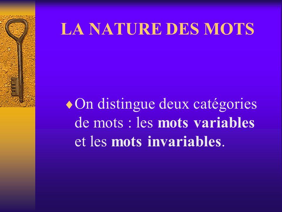 Comment identifier nature et fonction dun groupe de mots Dans le groupe, les mots se rassemblent autour dun noyau. Cest ce noyau qui donne au groupe s