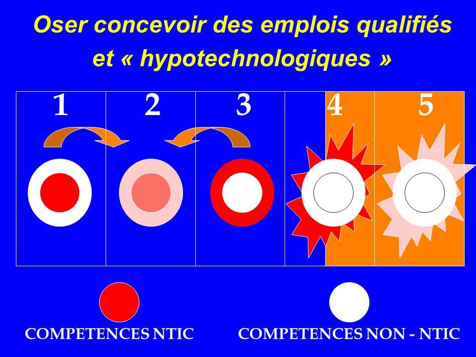 Obergo Oser concevoir des emplois qualifiés et « hypotechnologiques » DDD 12345 COMPETENCES NTICCOMPETENCES NON - NTIC