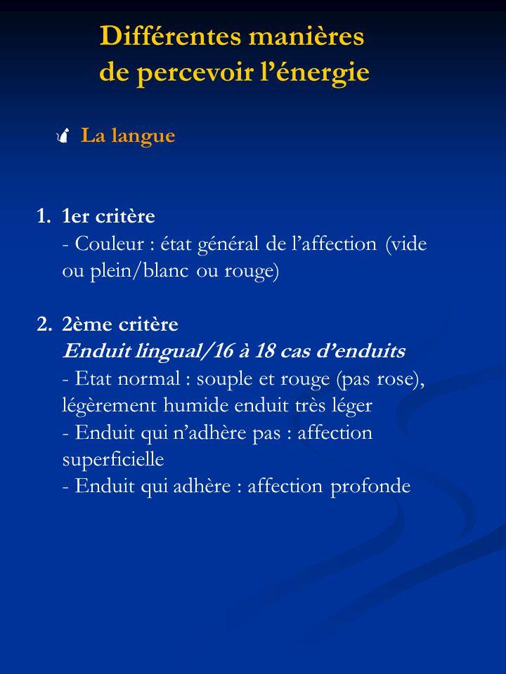 Différentes manières de percevoir lénergie La langue 1.1er critère - Couleur : état général de laffection (vide ou plein/blanc ou rouge) 2.2ème critèr