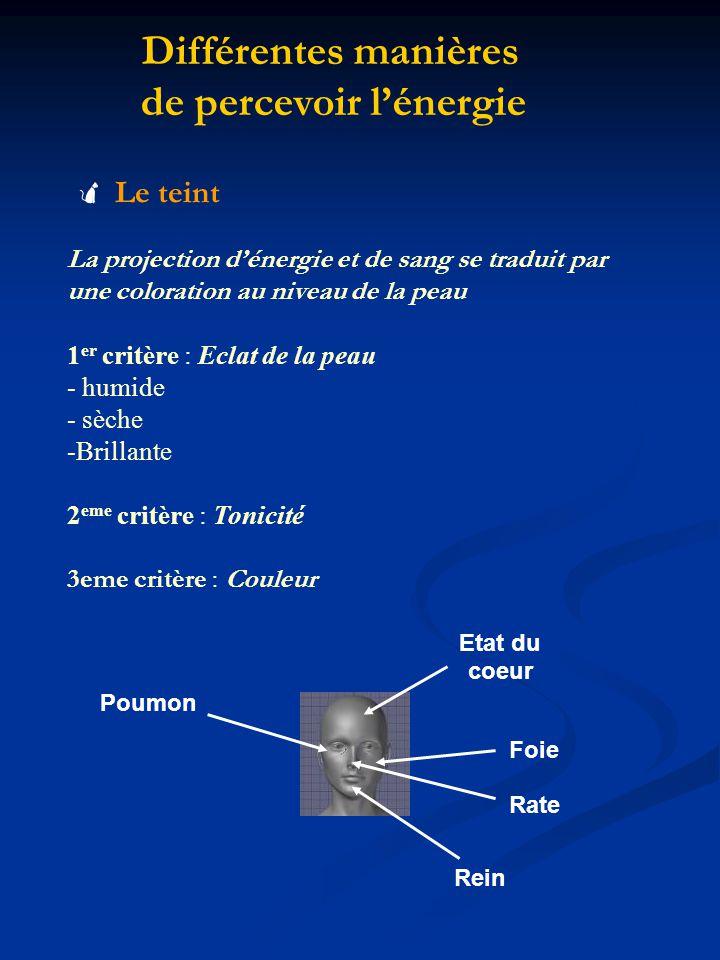 Différentes manières de percevoir lénergie Le teint La projection dénergie et de sang se traduit par une coloration au niveau de la peau 1 er critère