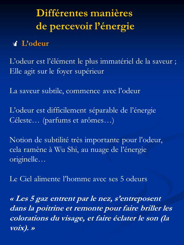 Différentes manières de percevoir lénergie Lodeur Lodeur est lélément le plus immatériel de la saveur ; Elle agit sur le foyer supérieur La saveur sub