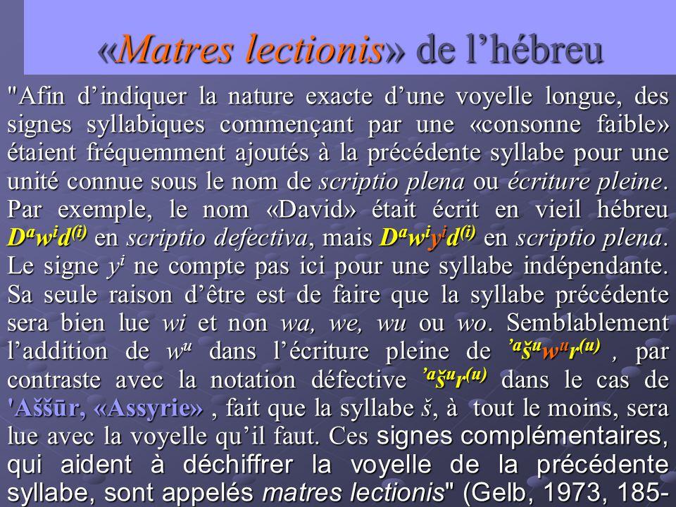 «Matres lectionis» de lhébreu