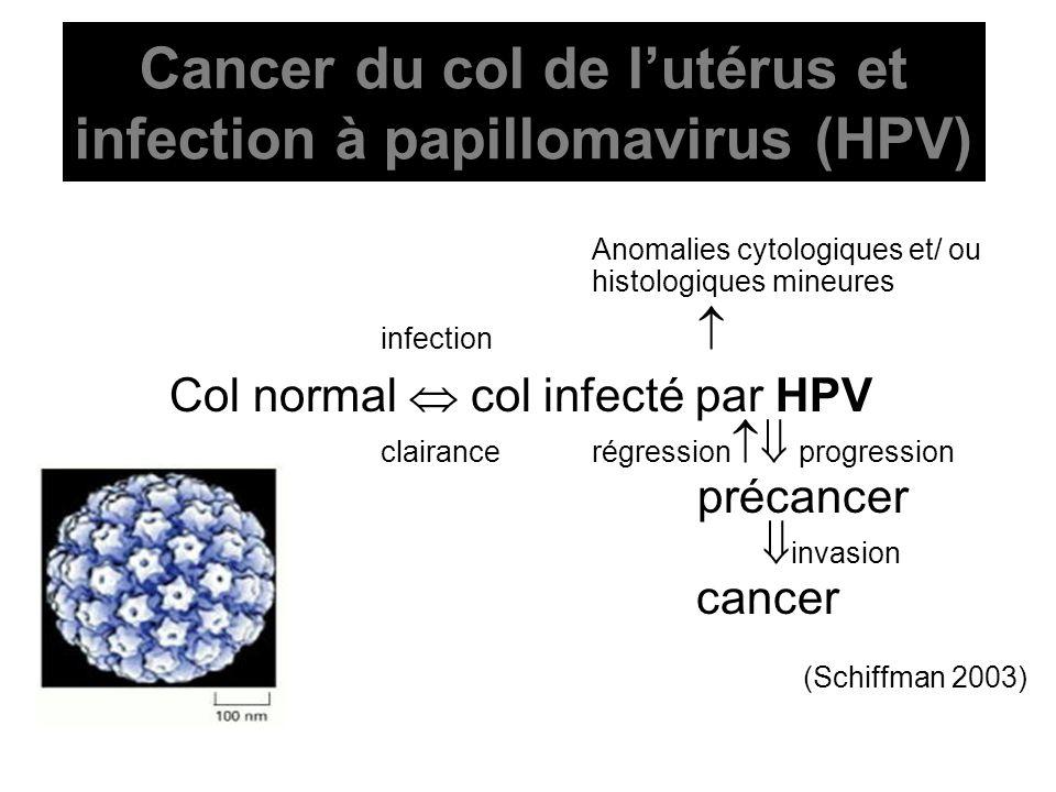 Cancer du col de lutérus et infection à papillomavirus (HPV) Anomalies cytologiques et/ ou histologiques mineures infection Col normal col infecté par