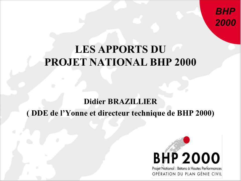 DU NOUVEAU DANS LE BETON : Conclusions et recommandations de BHP 2000 BHP 2000 LES APPORTS DU PROJET NATIONAL BHP 2000 Didier BRAZILLIER ( DDE de lYon