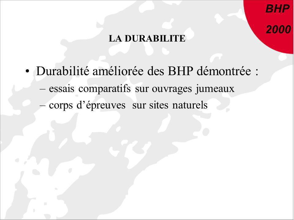 BHP 2000 LA DURABILITE Durabilité améliorée des BHP démontrée : –essais comparatifs sur ouvrages jumeaux –corps dépreuves sur sites naturels BHP 2000
