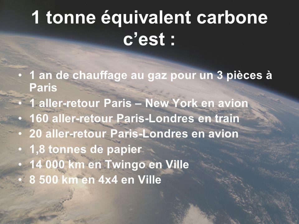 1 tonne équivalent carbone cest : 1 an de chauffage au gaz pour un 3 pièces à Paris 1 aller-retour Paris – New York en avion 160 aller-retour Paris-Lo