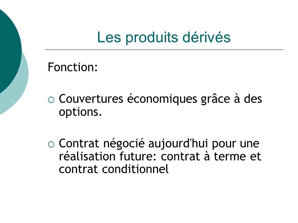 Les produits dérivés Fonction: Couvertures économiques grâce à des options.