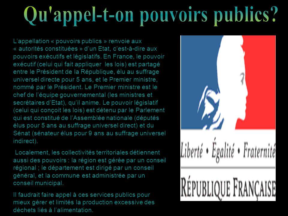 Lappellation « pouvoirs publics » renvoie aux « autorités constituées » dun Etat, cest-à-dire aux pouvoirs exécutifs et législatifs. En France, le pou