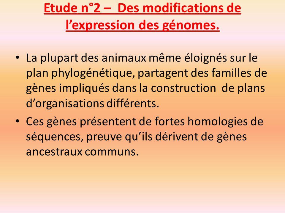 Les transferts de gènes entre espèces Des transferts horizontaux de matériel génétique entre individus, de la même espèce ou non, sont possibles en de