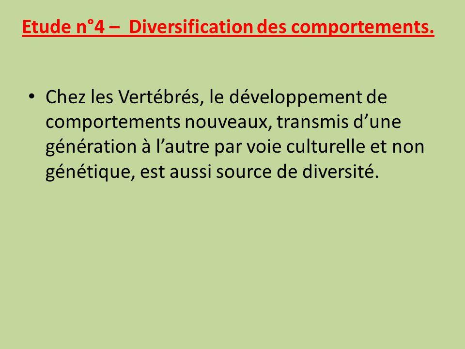 Etude n°3 – La symbiose, une diversification sans modification des génomes. Des associations symbiotiques peuvent modifier la morphologie, la synthèse