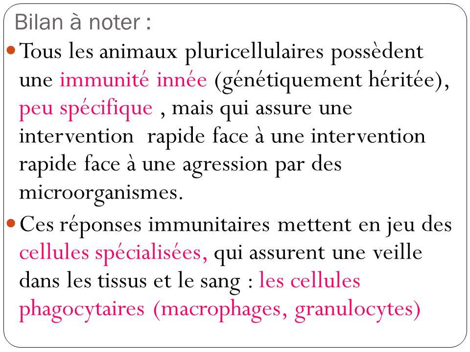 1) La réaction inflammatoire A laide des documents p.278-279, présentez dans un tableau les signes de linflammation à différentes échelles.