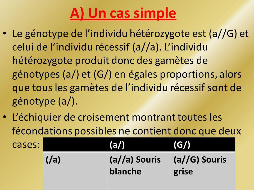 A) Un cas simple Le génotype de lindividu hétérozygote est (a//G) et celui de lindividu récessif (a//a). Lindividu hétérozygote produit donc des gamèt
