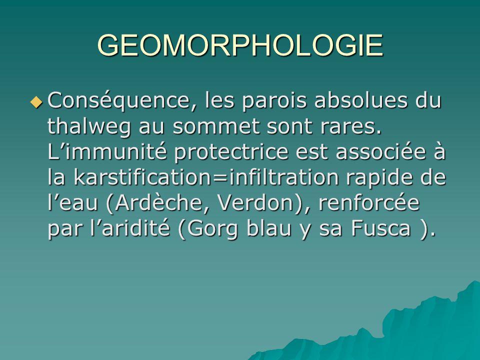 GEOMORPHOLOGIE Conséquence, les parois absolues du thalweg au sommet sont rares. Limmunité protectrice est associée à la karstification=infiltration r