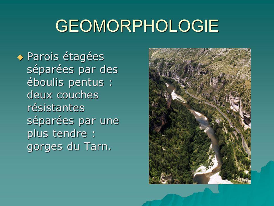 GEOMORPHOLOGIE Parois étagées séparées par des éboulis pentus : deux couches résistantes séparées par une plus tendre : gorges du Tarn. Parois étagées