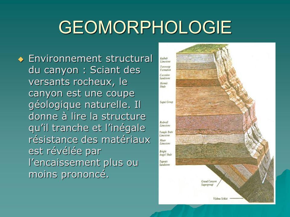 GEOMORPHOLOGIE Environnement structural du canyon : Sciant des versants rocheux, le canyon est une coupe géologique naturelle. Il donne à lire la stru
