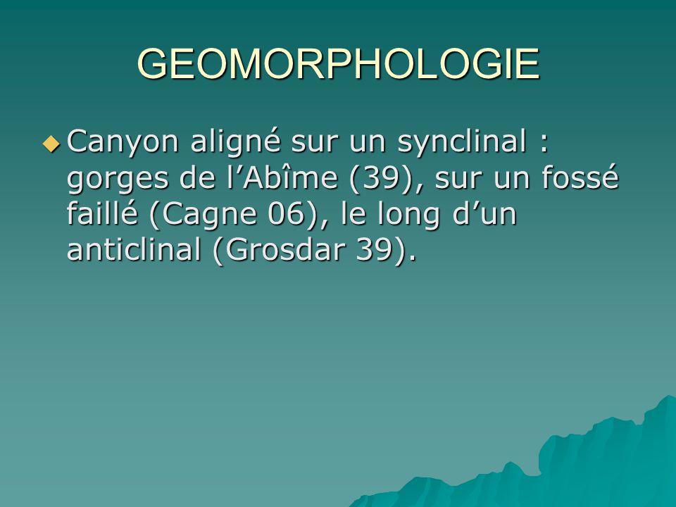 GEOMORPHOLOGIE Canyon aligné sur un synclinal : gorges de lAbîme (39), sur un fossé faillé (Cagne 06), le long dun anticlinal (Grosdar 39). Canyon ali