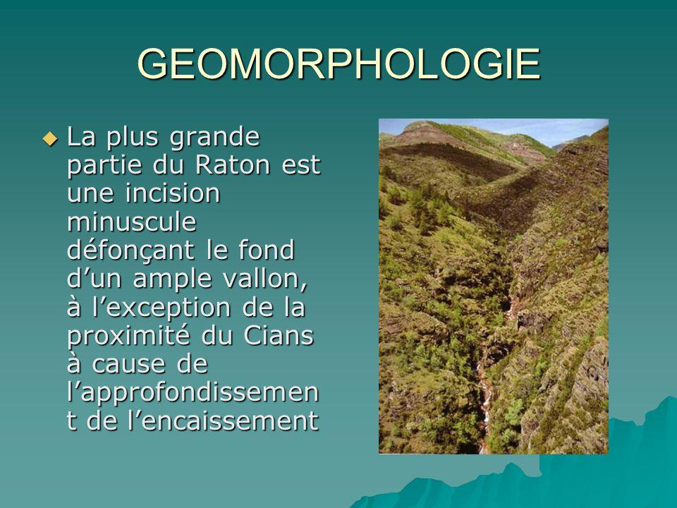 GEOMORPHOLOGIE La plus grande partie du Raton est une incision minuscule défonçant le fond dun ample vallon, à lexception de la proximité du Cians à c