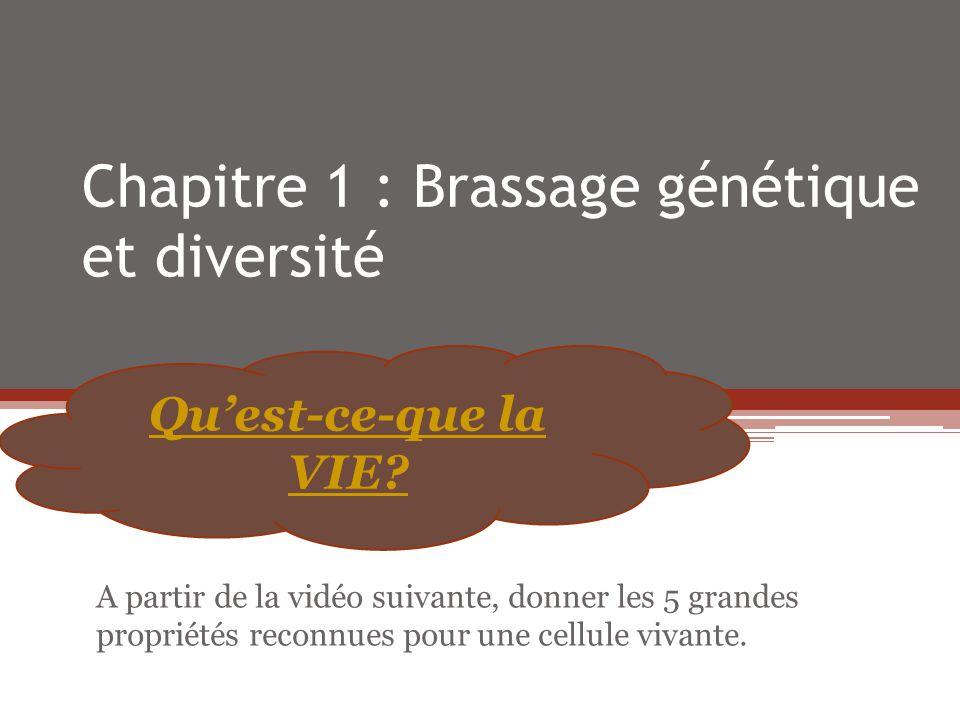 Chapitre 1 : Brassage génétique et diversité Quest-ce-que la VIE? A partir de la vidéo suivante, donner les 5 grandes propriétés reconnues pour une ce
