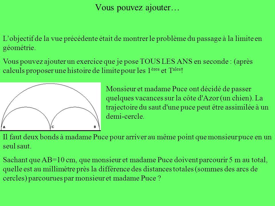 Vous pouvez ajouter… Lobjectif de la vue précédente était de montrer le problème du passage à la limite en géométrie. Vous pouvez ajouter un exercice