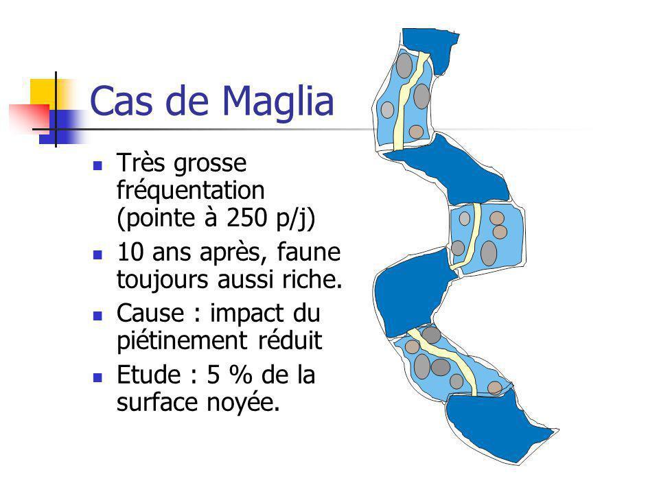 Cas de Maglia Très grosse fréquentation (pointe à 250 p/j) 10 ans après, faune toujours aussi riche. Cause : impact du piétinement réduit Etude : 5 %