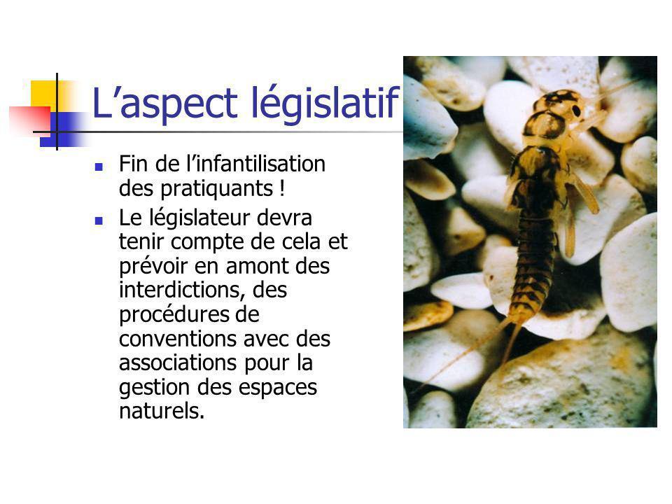 Laspect législatif Fin de linfantilisation des pratiquants ! Le législateur devra tenir compte de cela et prévoir en amont des interdictions, des proc