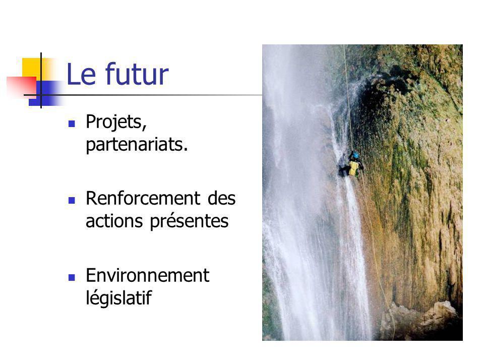 Le futur Projets, partenariats. Renforcement des actions présentes Environnement législatif