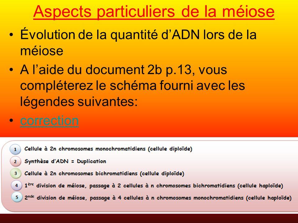 Aspects particuliers de la méiose Évolution de la quantité dADN lors de la méiose A laide du document 2b p.13, vous compléterez le schéma fourni avec les légendes suivantes: correction
