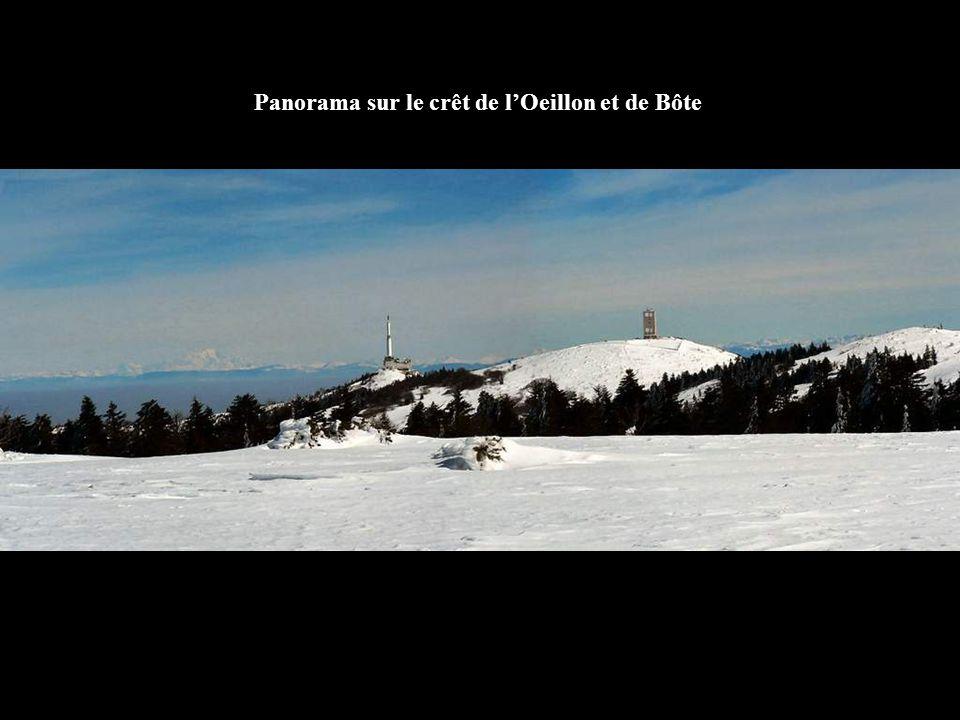 Panorama depuis le crêt de la Perdrix …1432 m