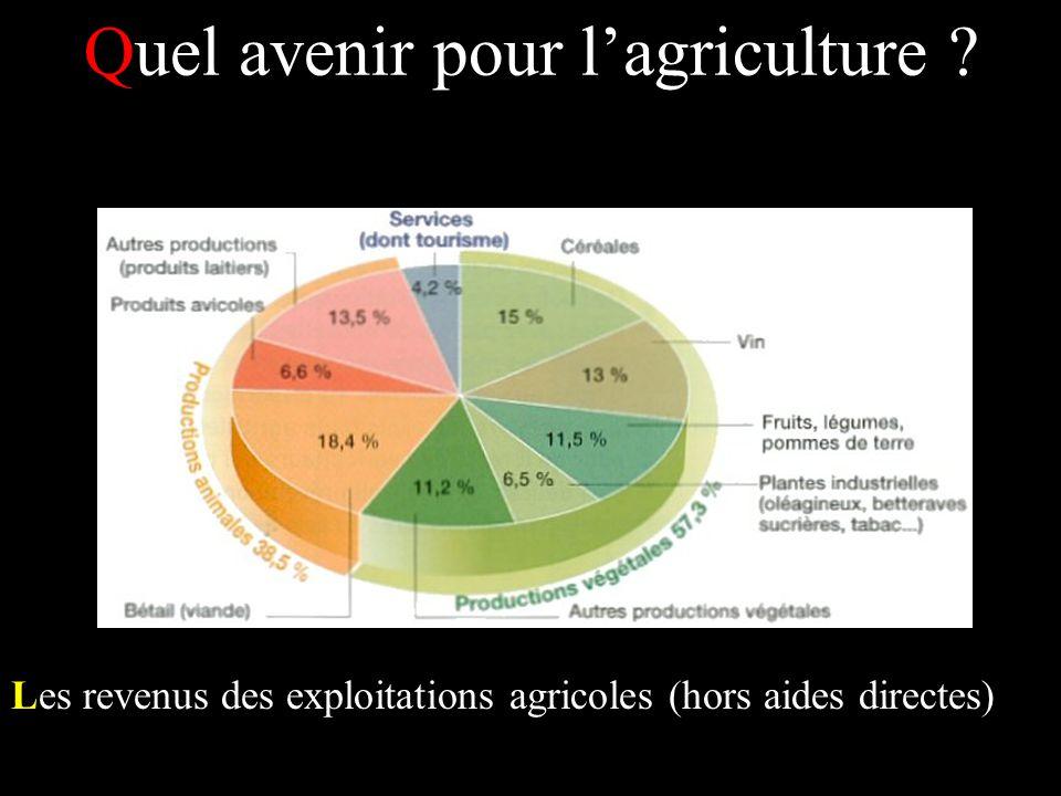 Quel avenir pour lagriculture ? Les revenus des exploitations agricoles (hors aides directes)