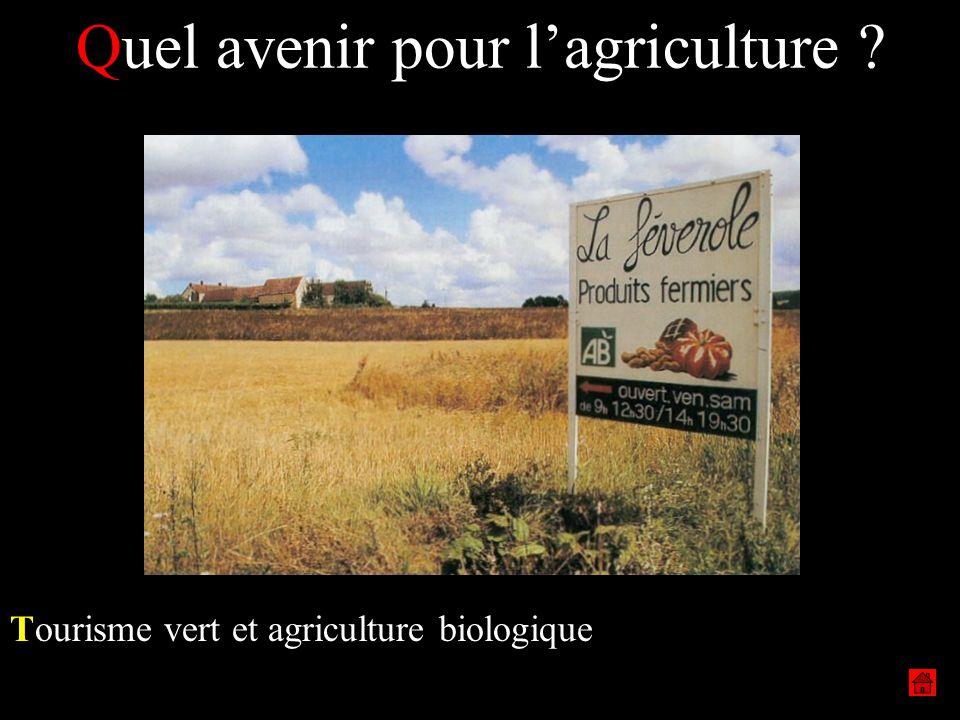 Quel avenir pour lagriculture ? Tourisme vert et agriculture biologique
