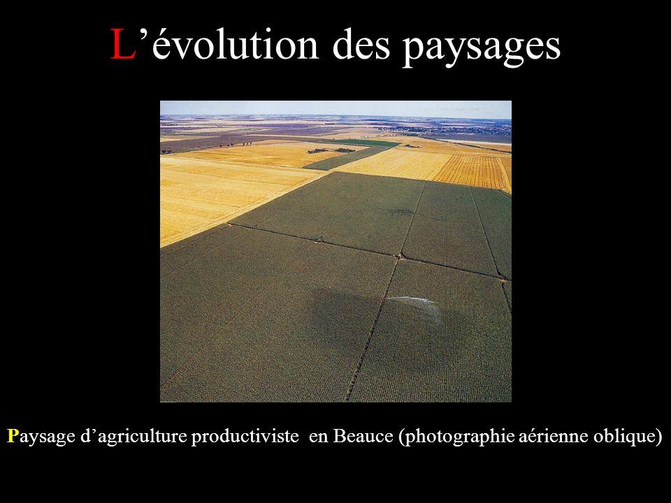 Lévolution des paysages Paysage dagriculture productiviste en Beauce (photographie aérienne oblique)