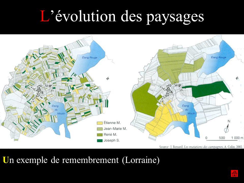 Lévolution des paysages Un exemple de remembrement (Lorraine)