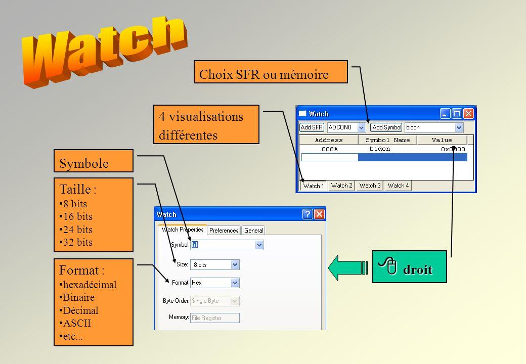 MPLAB permet de visualiser de nombreuses informations : le code machine la RAM, les registres du µC, lEEPROM, etc…. Il permet même une visualisation s