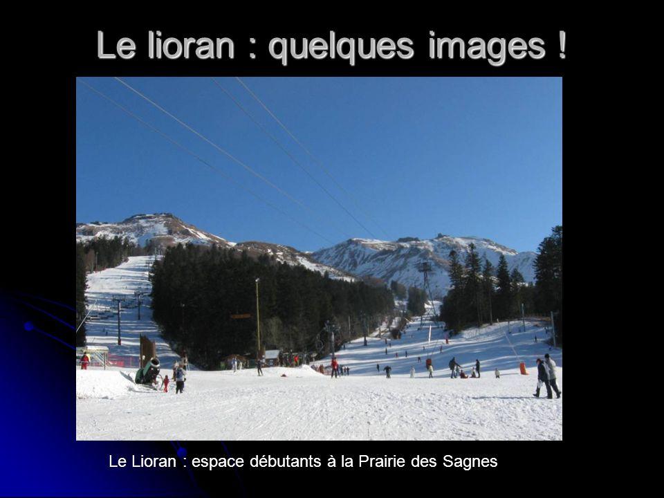 Le lioran : quelques images ! Le Lioran : espace débutants à la Prairie des Sagnes